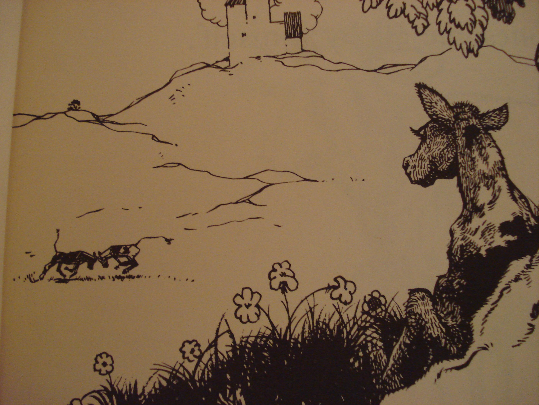 Ferdinand The Bull Illustrations