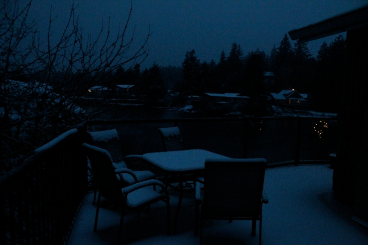 Our deck before sunrise.