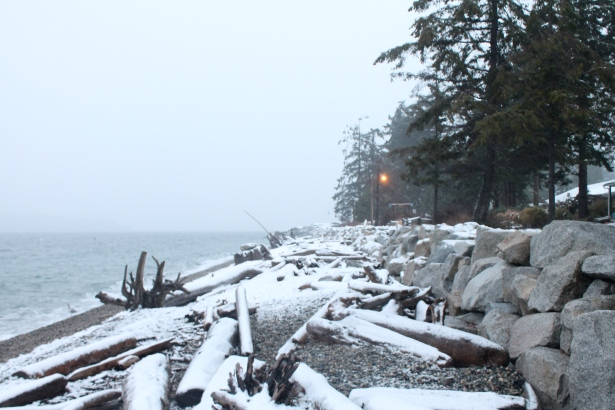 Snicket Park in Sechelt