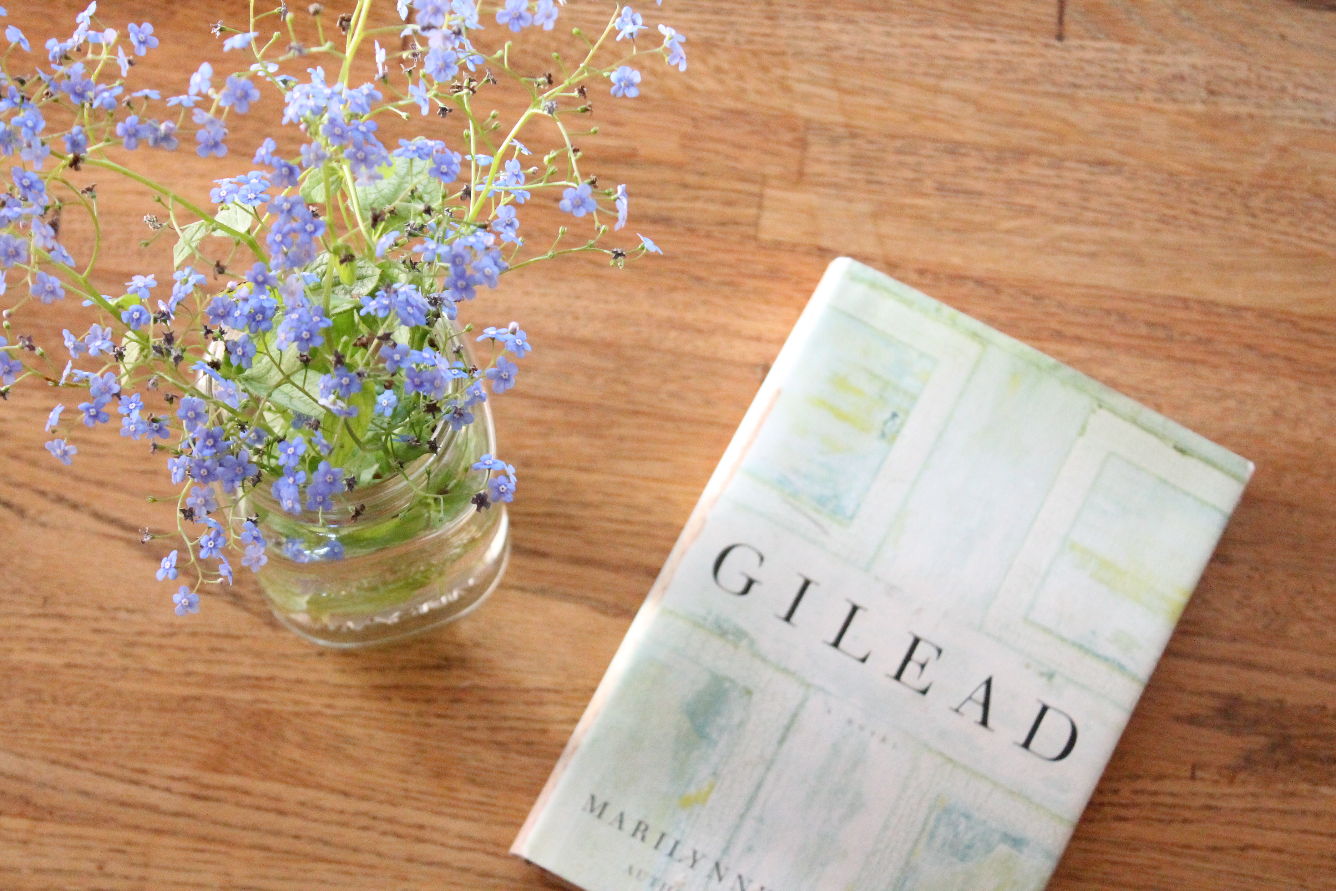book review on home by marilynne A companion volume to robinson's luminous, pulitzer-winning novel gilead (2004.