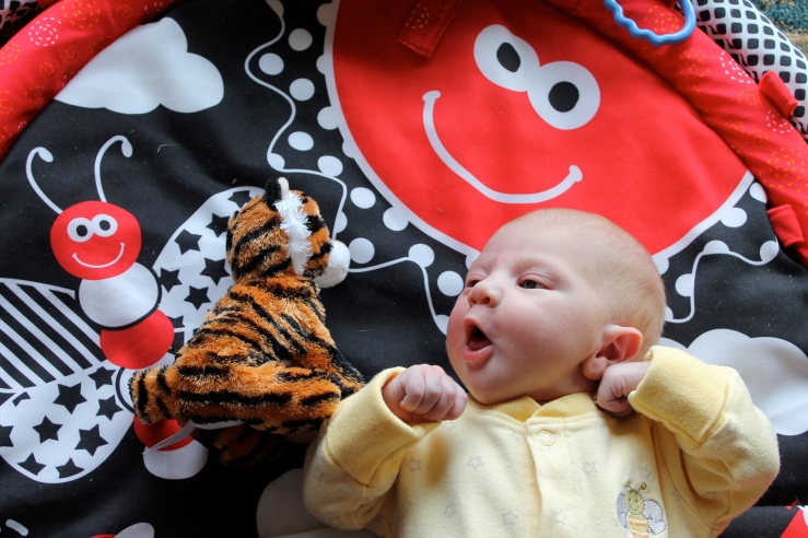 Stripes the Healthy Heart Tiger and Pearl