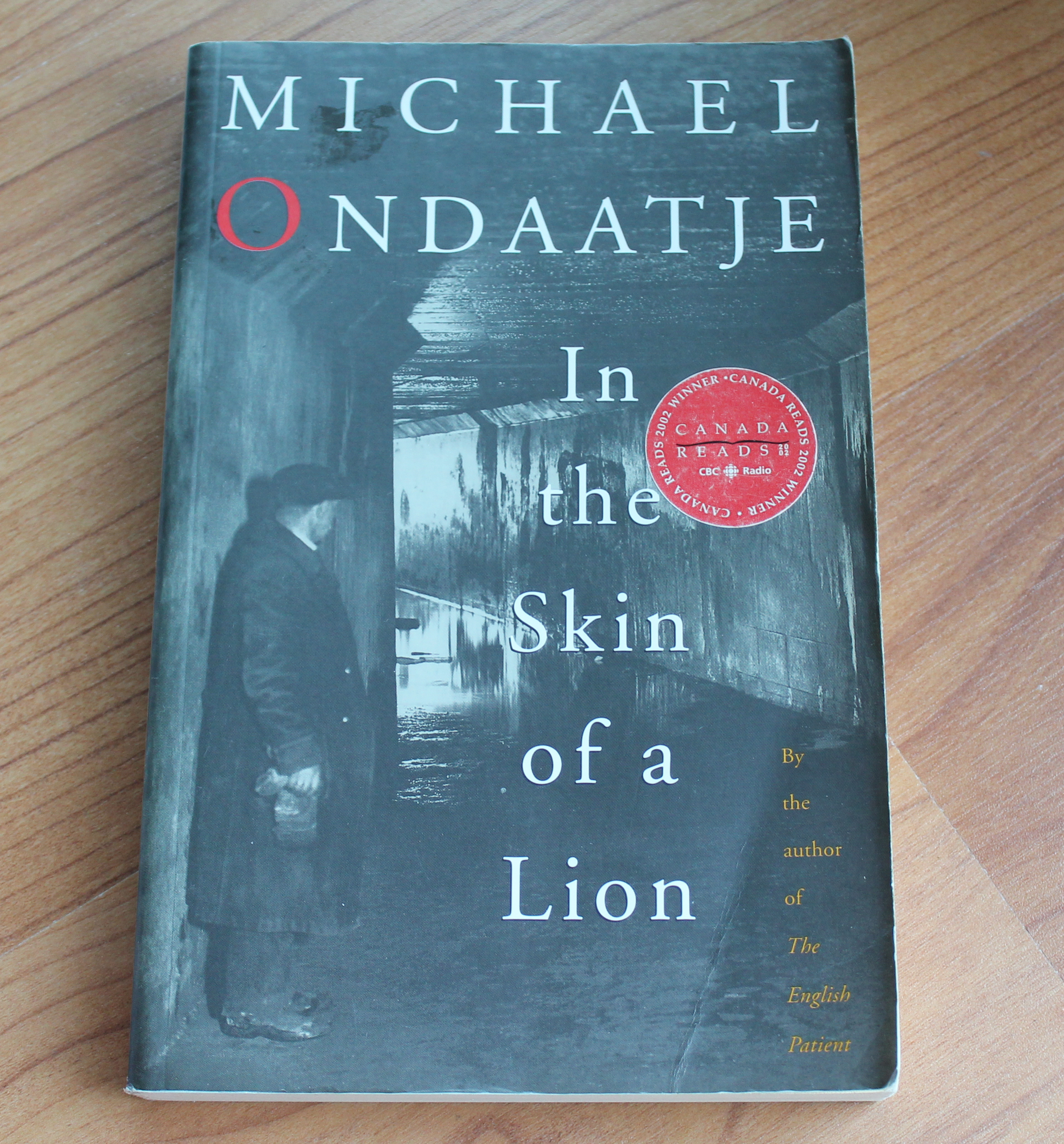 an analysis of michael ondaatjes book skin of a lion