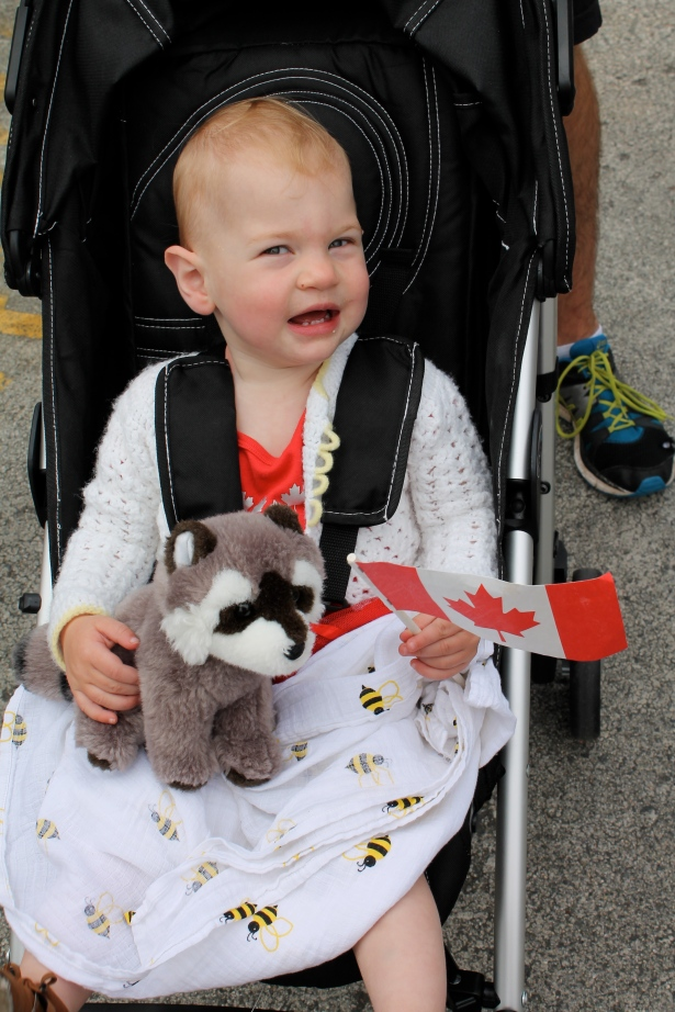 A raccoon seemed like the most Canadian of Pearl's stuffed animals.